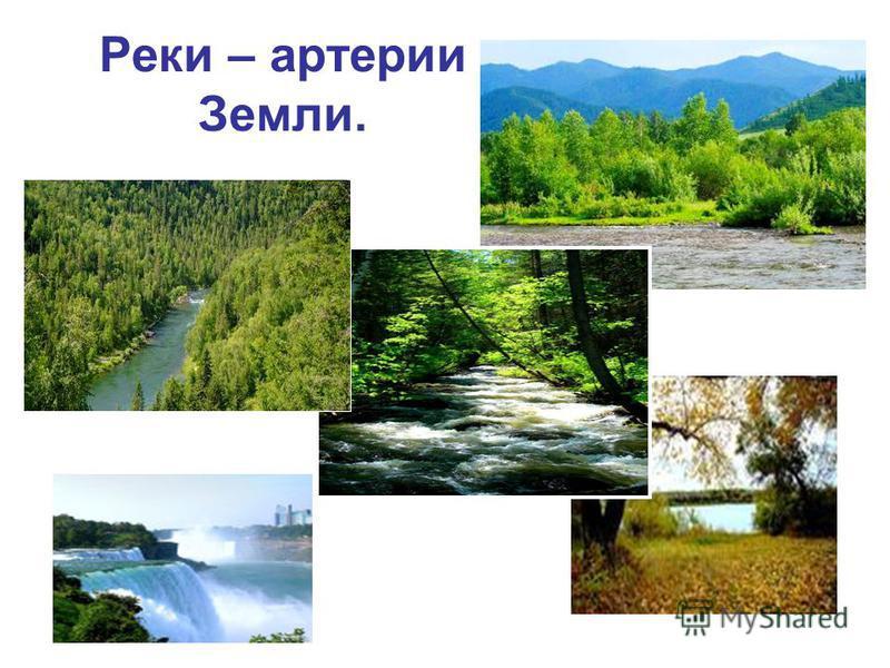 Реки – артерии Земли.