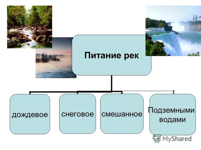 Питание рек дождевоеснеговоесмешанное Подземными водами
