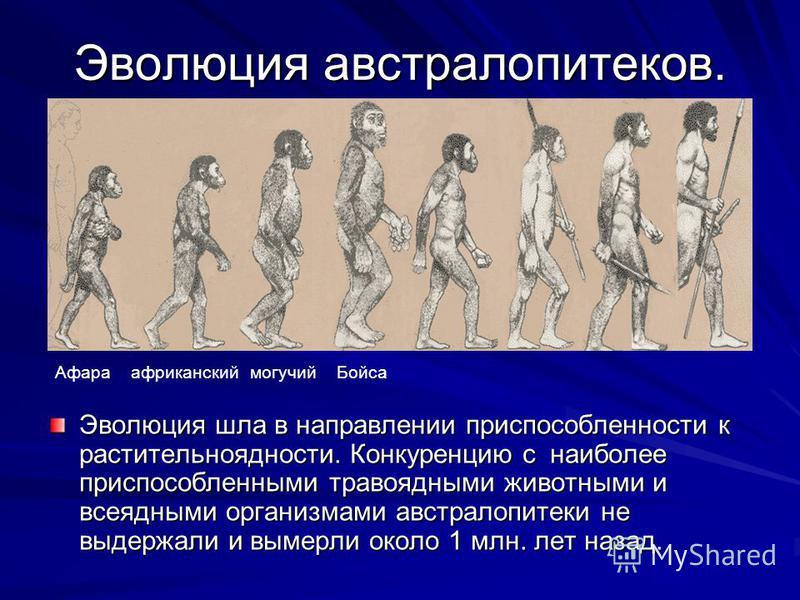A neanderthal man, along with australopithecus, homo habilis and homo erectus were portrayed to