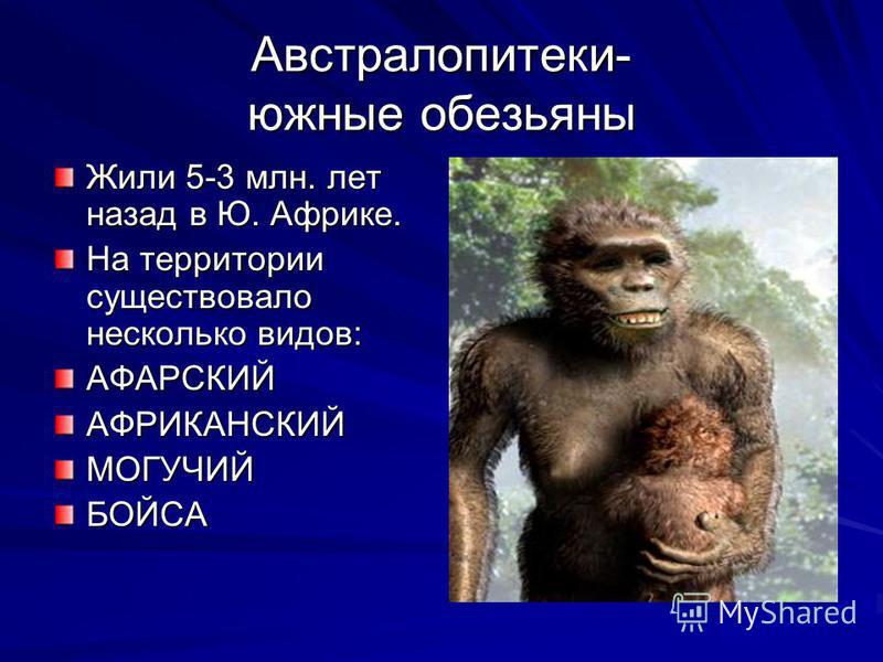 Австралопитеки- южные обезьяны Жили 5-3 млн. лет назад в Ю. Африке. На территории существовало несколько видов: АФАРСКИЙАФРИКАНСКИЙМОГУЧИЙБОЙСА