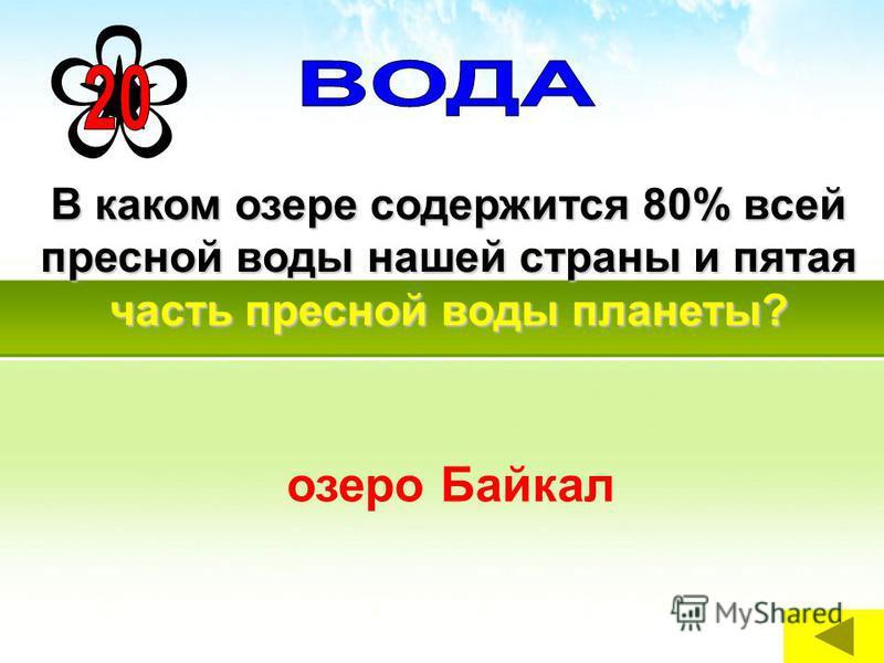 В каком озере содержится 80% всей пресной воды нашей страны и пятая часть пресной воды планеты? озеро Байкал