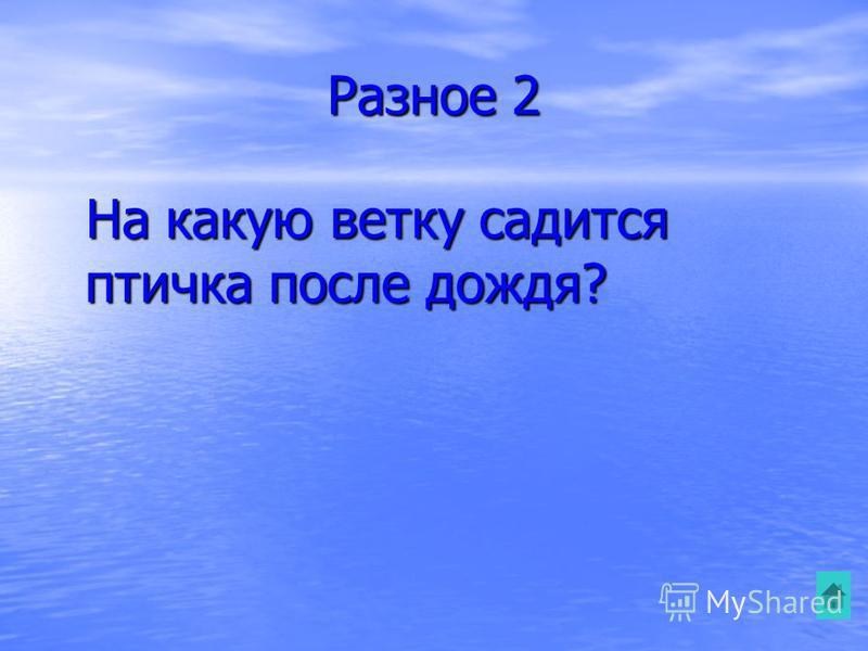 Разное 2 На какую ветку садится птичка после дождя? На какую ветку садится птичка после дождя?