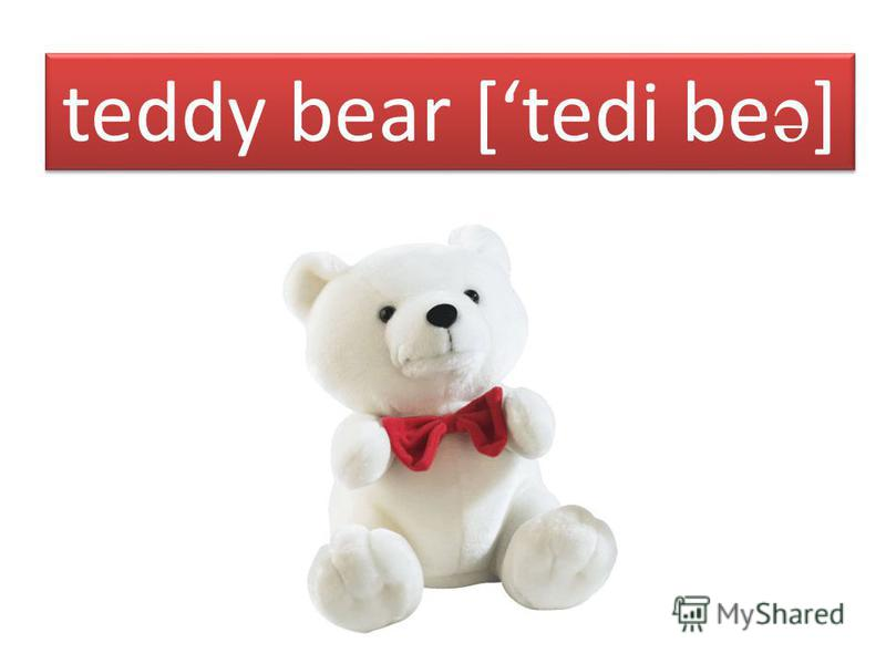 teddy bear [tedi be ə ]
