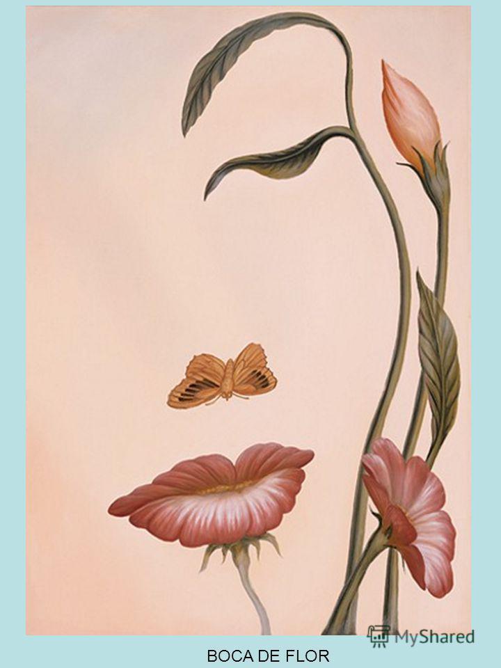 A Arte da Ilusão de Octavio Ocampo Octavio Ocampo nasceu em Celaya, Guanajuato, no México, em 1943. Desde cedo demonstrou talento para a pintura e facilidade para trabalhar com os mais diversos tipo de materiais, sempre aplicando e experimentando nov