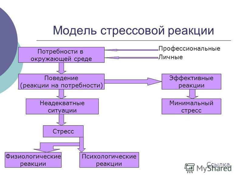 Модель стрессовой реакции Профессиональные Личные Потребности в окружающей среде Поведение (реакции на потребности) Неадекватные ситуации Стресс Физиологические реакции Психологические реакции Эффективные реакции Минимальный стресс Ссылка