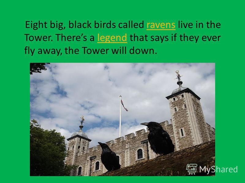 Eight big, black birds called ravens live in the Tower. Theres a legend that says if they ever fly away, the Tower will down.ravenslegend