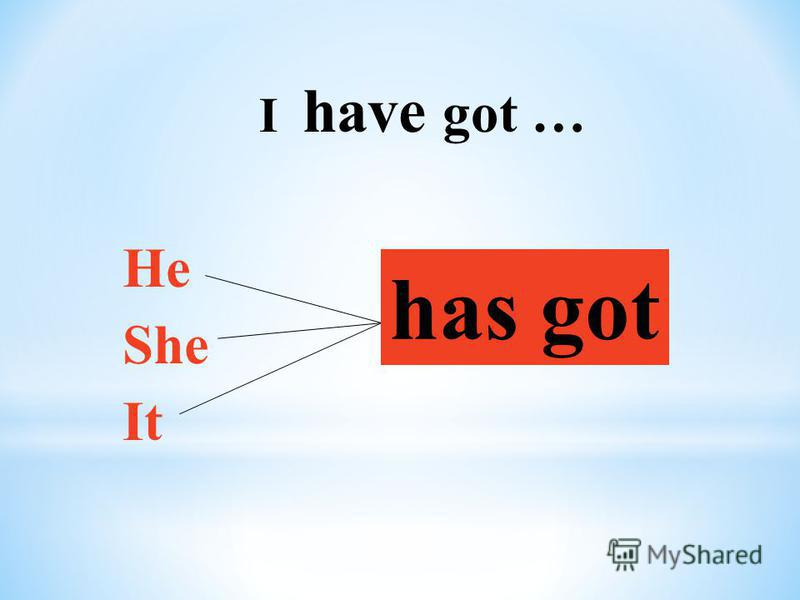 I have got … He She It has got