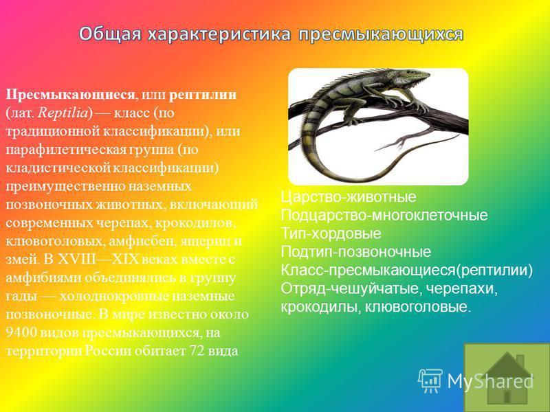 Царство-животные Подцарство-многоклеточные Тип-хордовые Подтип-позвоночные Класс-пресмыкающиеся(рептилии) Отряд-чешуйчатые, черепахи, крокодилы, клювоголовые. Пресмыкающиеся, или рептилии (лат. Reptilia) класс (по традиционной классификации), или пар