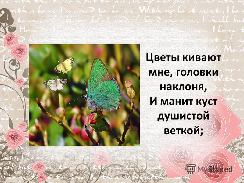 Цветы кивают мне, головки наклоне, И манит куст душистой веткой;