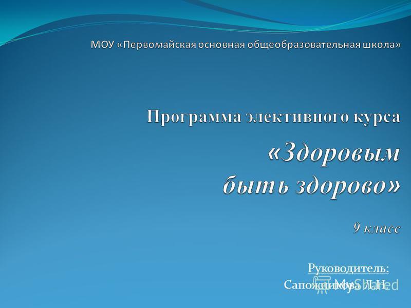 Руководитель: Сапожникова Л.Н.