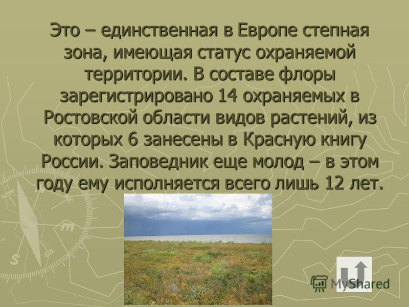 Это – единственная в Европе степная зона, имеющая статус охраняемой территории. В составе флоры зарегистрировано 14 охраняемых в Ростовской области видов растений, из которых 6 занесены в Красную книгу России. Заповедник еще молод – в этом году ему и
