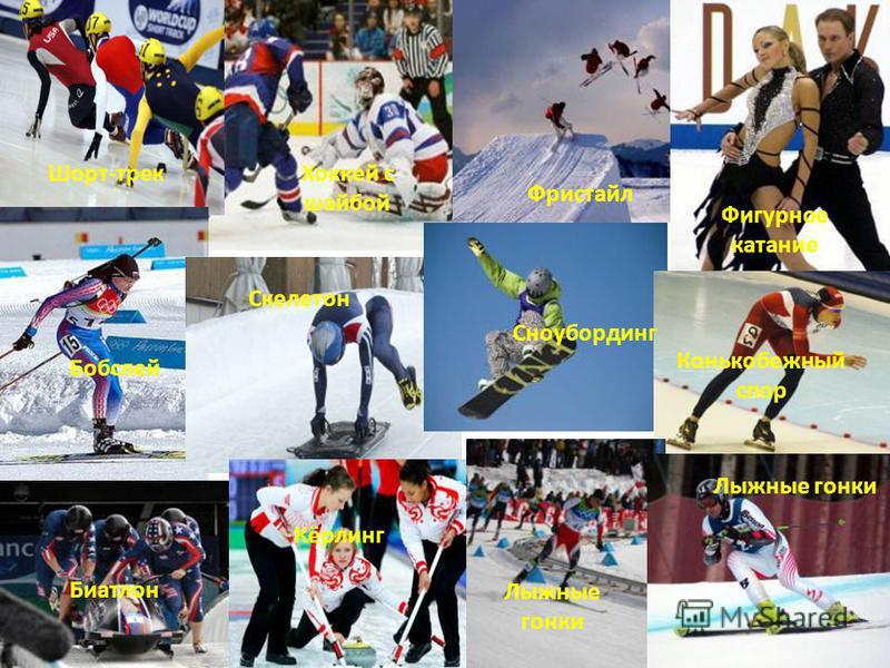 Хоккей с шайбой Шорт-трек Фристайл Фигурное катание Биатлон Скелетон Сноубординг Конькобежный спор Бобслей Кёрлинг Лыжные гонки