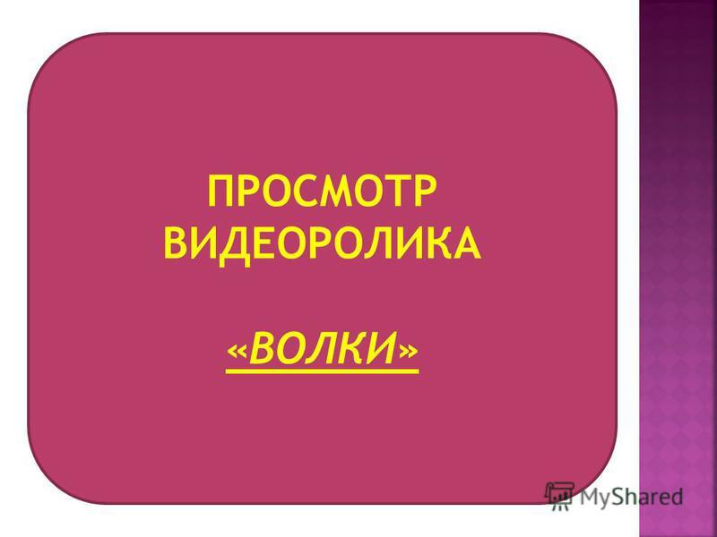 ПРОСМОТР ВИДЕОРОЛИКА «ВОЛКИ»