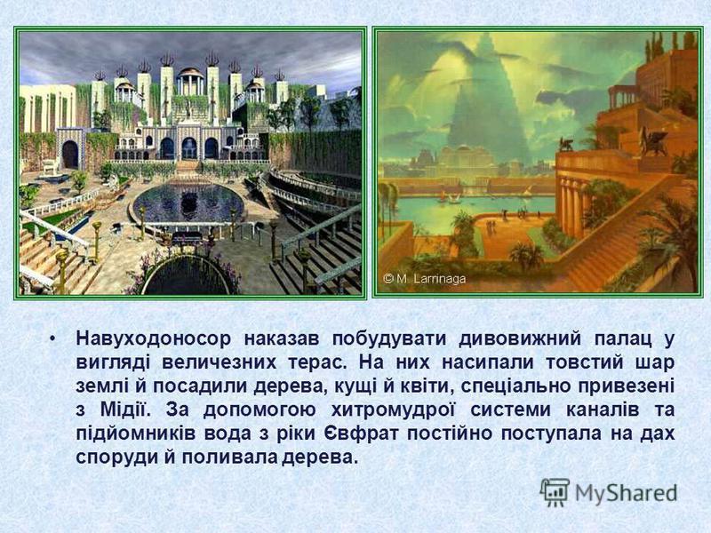 Навуходоносор наказав побудувати дивовижний палац у вигляді величезних терас. На них насипали товстий шар землі й посадили дерева, кущі й квіти, спеціально привезені з Мідії. За допомогою хитромудрої системи каналів та підйомників вода з ріки Євфрат