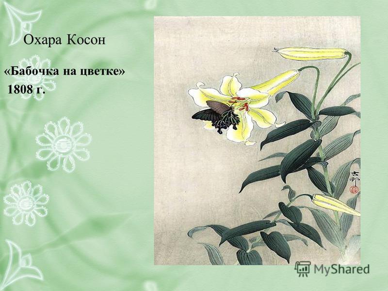 Охара Косон «Бабочка на цветке» 1808 г.