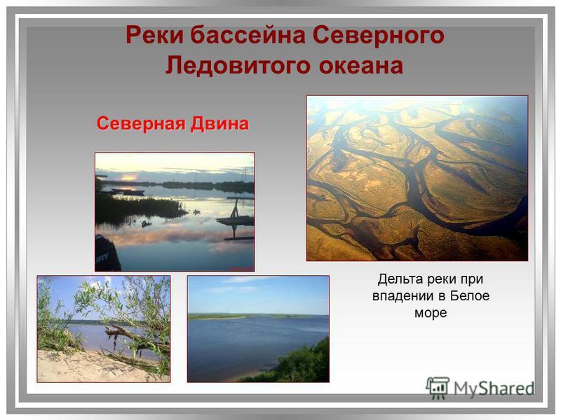 Северная Двина Дельта реки при впадении в Белое море Реки бассейна Северного Ледовитого океана