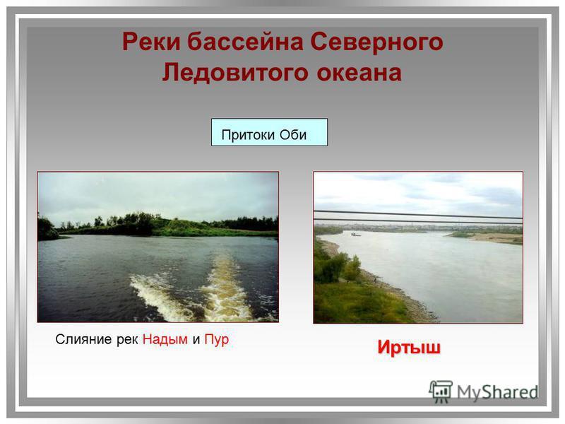 Реки бассейна Северного Ледовитого океана Слияние рек Надым и Пур Притоки Оби Иртыш