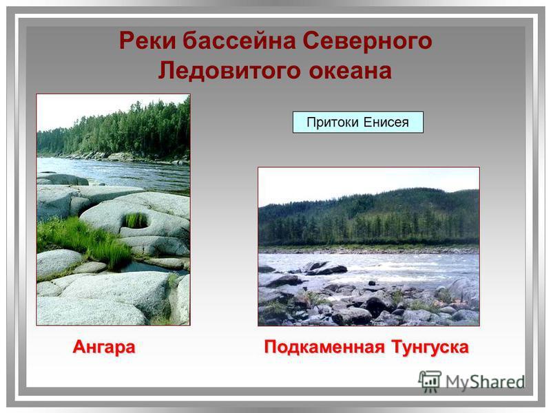 Притоки Енисея Ангара Подкаменная Тунгуска