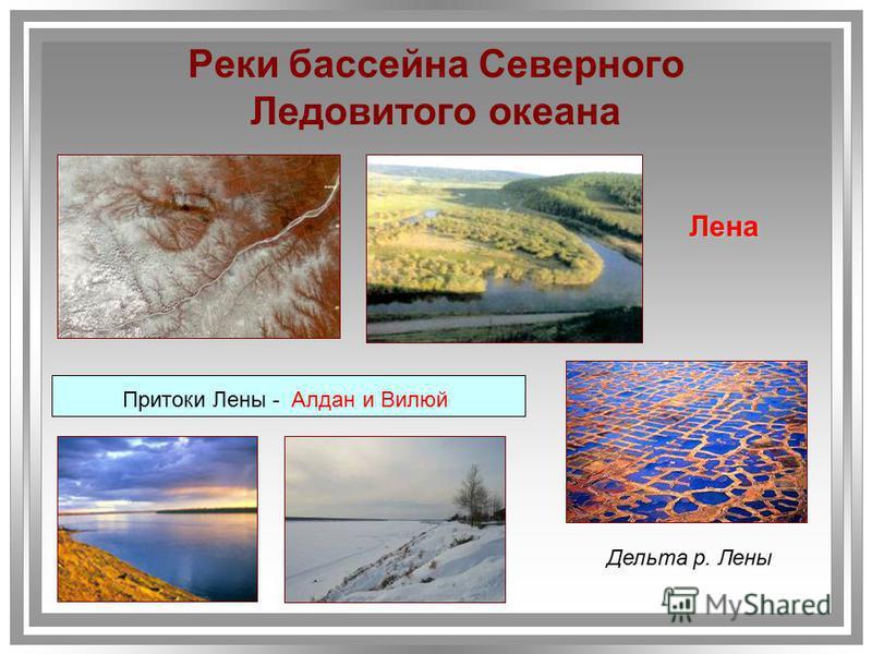 Реки бассейна Северного Ледовитого океана Лена Притоки Лены - Алдан и Вилюй Дельта р. Лены