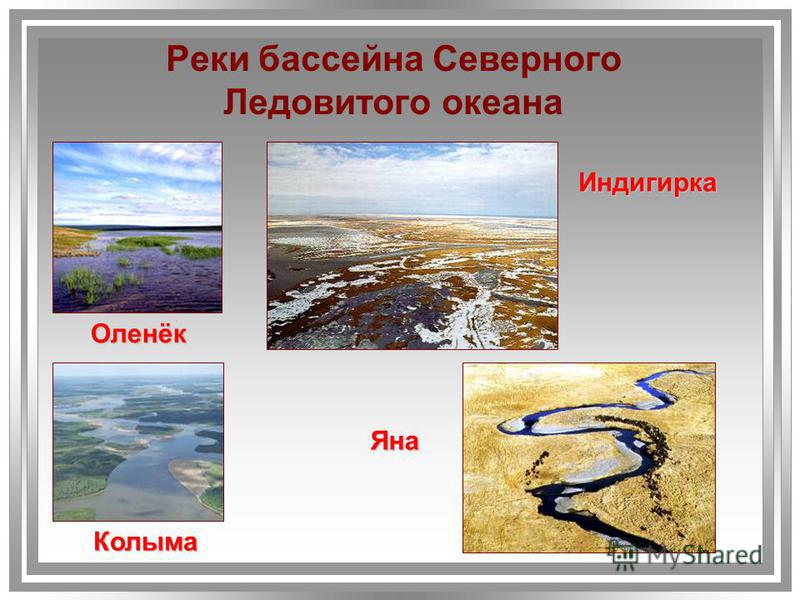 Реки бассейна Северного Ледовитого океана Яна Индигирка Колыма Оленёк