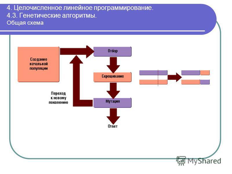 4. Целочисленное линейное программирование. 4.3. Генетические алгоритмы. Общая схема