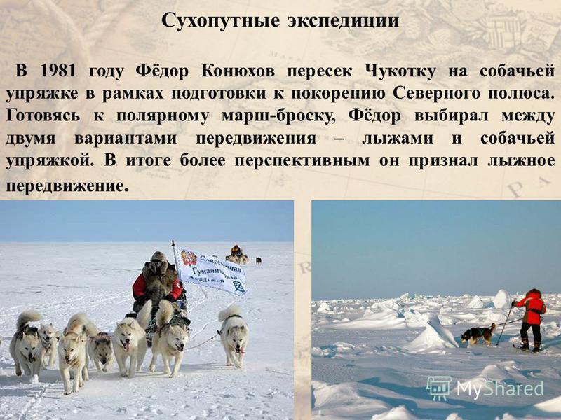 Сухопутные экспедиции В 1981 году Фёдор Конюхов пересек Чукотку на собачьей упряжке в рамках подготовки к покорению Северного полюса. Готовясь к полярному марш-броску, Фёдор выбирал между двумя вариантами передвижения – лыжами и собачьей упряжкой. В