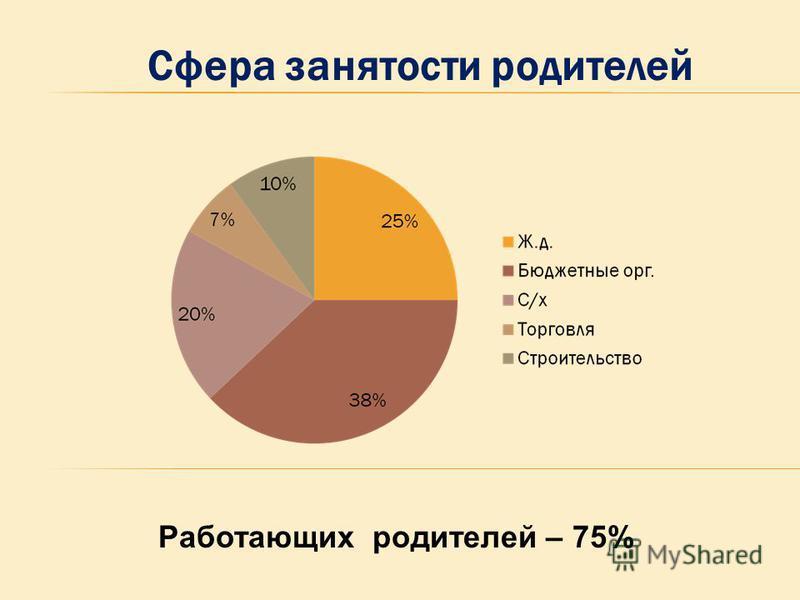 Сфера занятости родителей Работающих родителей – 75%