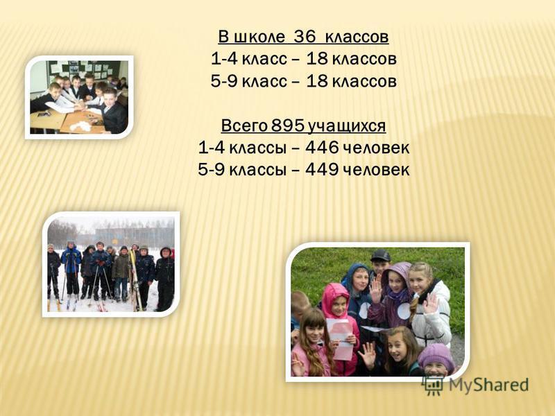 В школе 36 классов 1-4 класс – 18 классов 5-9 класс – 18 классов Всего 895 учащихся 1-4 классы – 446 человек 5-9 классы – 449 человек