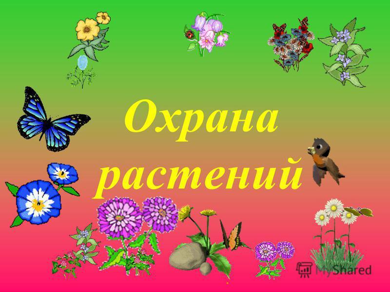 . Охрана растений