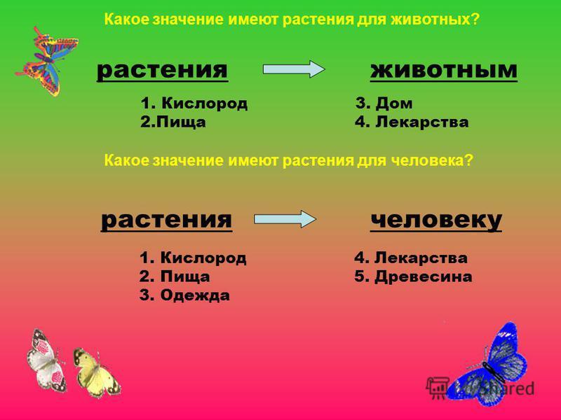 растения животным 1. Кислород 3. Дом 2. Пища 4. Лекарства растения человеку 1. Кислород 4. Лекарства 2. Пища 5. Древесина 3. Одежда Какое значение имеют растения для животных? Какое значение имеют растения для человека?