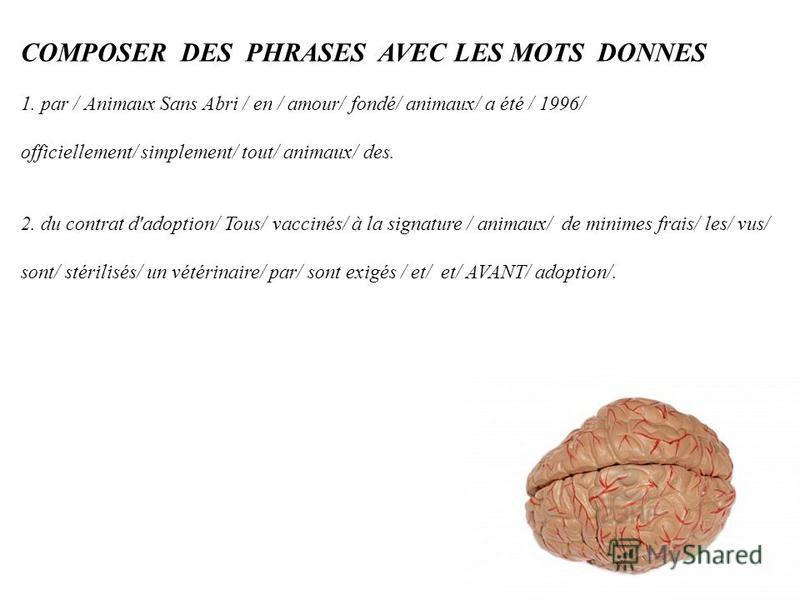 COMPOSER DES PHRASES AVEC LES MOTS DONNES 1. par / Animaux Sans Abri / en / amour/ fondé/ animaux/ a été / 1996/ officiellement/ simplement/ tout/ animaux/ des. 2. du contrat d'adoption/ Tous/ vaccinés/ à la signature / animaux/ de minimes frais/ les