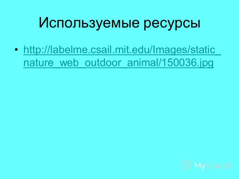 Используемые ресурсы http://labelme.csail.mit.edu/Images/static_ nature_web_outdoor_animal/150036.jpghttp://labelme.csail.mit.edu/Images/static_ nature_web_outdoor_animal/150036.jpg