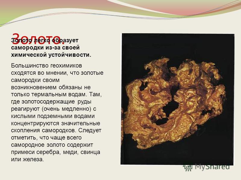 Золото. Золото легко образует самородки из-за своей химической устойчивости. Большинство геохимиков сходятся во мнении, что золотые самородки своим возникновением обязаны не только термальным водам. Там, где золотосодержащие руды реагируют (очень мед