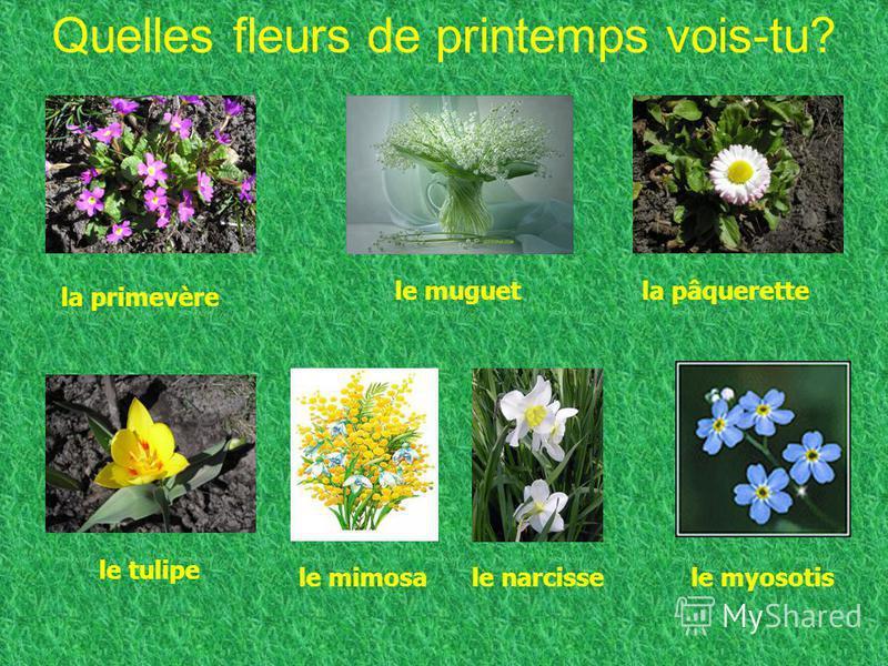 La poésie Avril Cest le printemps Il fait beau temps Le soleil brille Cest le mois davril!