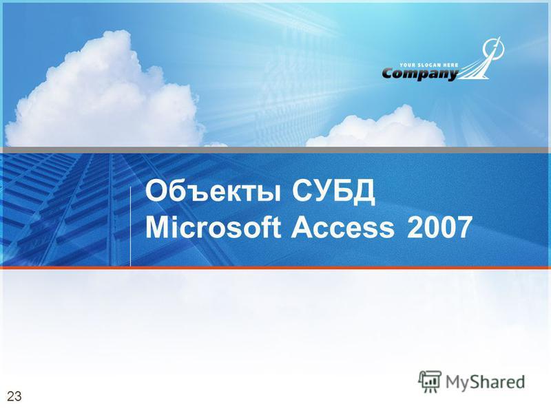 Объекты СУБД Microsoft Access 2007 23