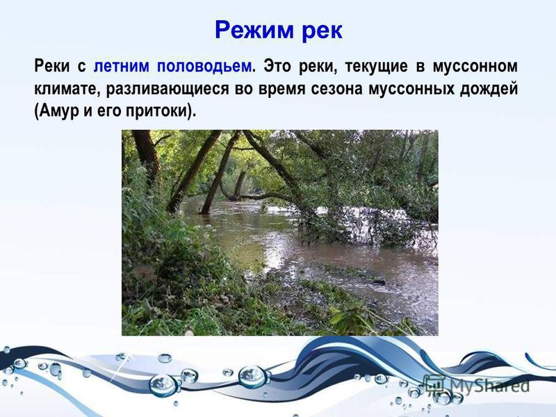 Реки с летним половодьем. Это реки, текущие в муссонном климате, разливающиеся во время сезона муссонных дождей (Амур и его притоки). Режим рек
