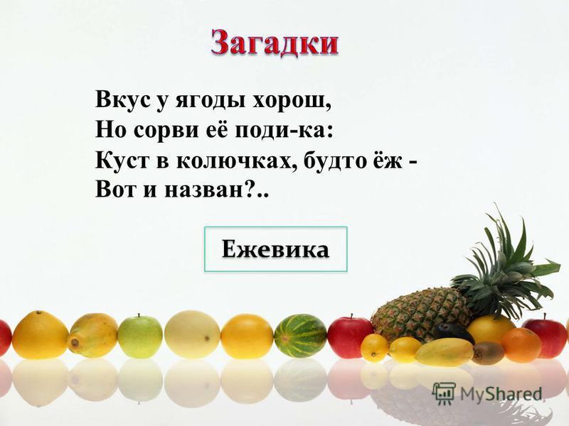 Вкус у ягоды хорош, Но сорви её поди-ка: Куст в колючках, будто ёж - Вот и назван?.. Ежевика