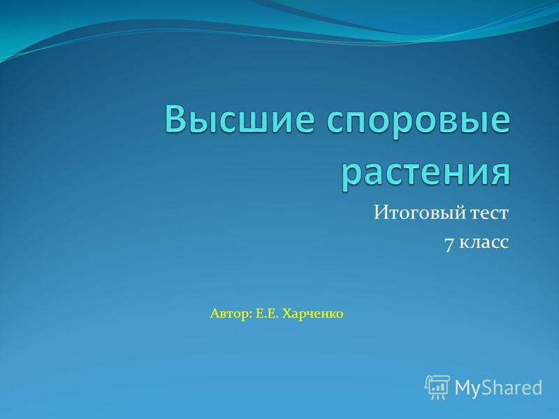 Итоговый тест 7 класс Автор: Е.Е. Харченко