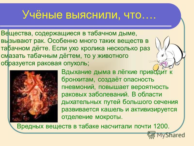 Учёные выяснили, что…. Вещества, содержащиеся в табачном дыме, вызывают рак. Особенно много таких веществ в табачном дёгте. Если ухо кролика несколько раз смазать табачным дёгтем, то у животного образуется раковая опухоль; Вдыхание дыма в лёгкие прив