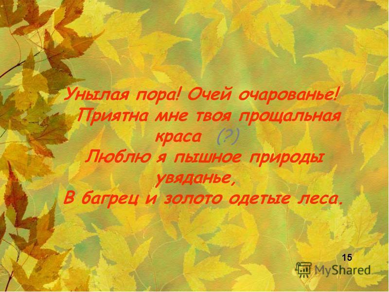 Унылая пора! Очей очарованье! Приятна мне твоя прощальная краса (?) Люблю я пышное природы увяданье, В багрец и золото одетые леса. 15