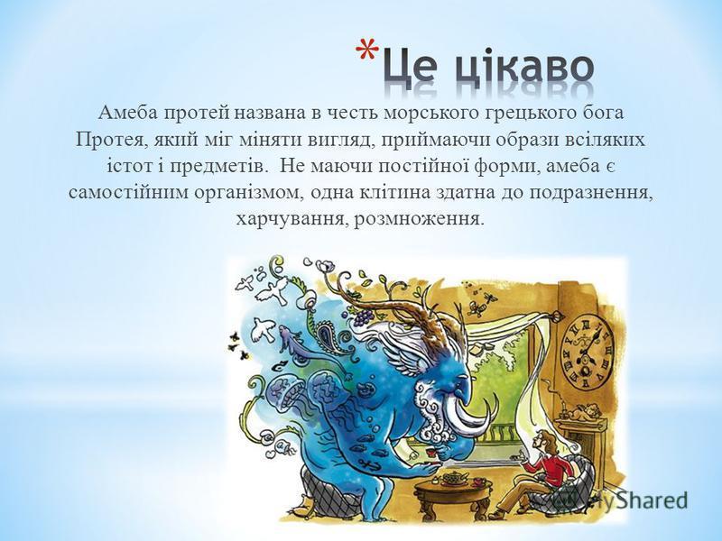 Амеба протей названа в честь морського грецького бога Протея, який міг міняти вигляд, приймаючи образи всіляких істот і предметів. Не маючи постійної форми, амеба є самостійним організмом, одна клітина здатна до подразнення, харчування, розмноження.