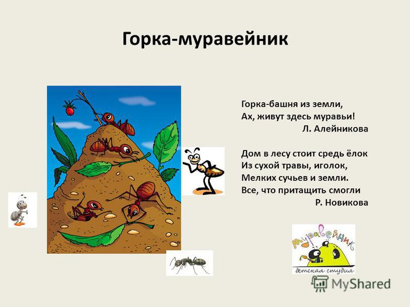 Что такое горы? Учитель: Салагаева Л. М. школа 613 г. Санкт-Петербург