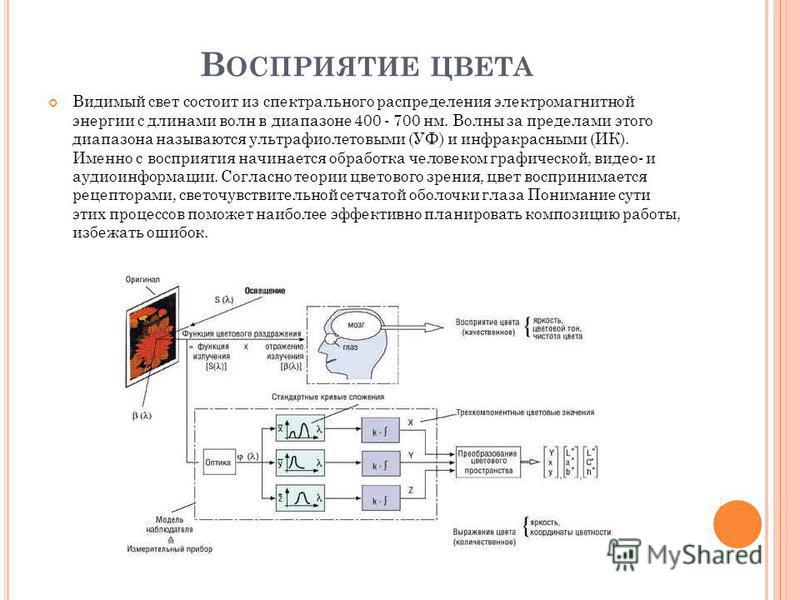 В ОСПРИЯТИЕ ЦВЕТА Видимый свет состоит из спектрального распределения электромагнитной энергии с длинами волн в диапазоне 400 - 700 нм. Волны за пределами этого диапазона называются ультрафиолетовыми (УФ) и инфракрасными (ИК). Именно с восприятия нач