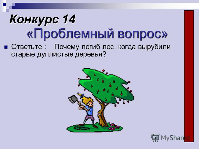 Конкурс 14 «Проблемный вопрос» Ответьте : Почему погиб лес, когда вырубили старые дуплистые деревья?