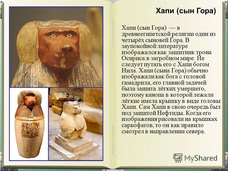 Хапи (сын Гора) в древнеегипетской религии один из четырёх сыновей Гора. В заупокойной литературе изображался как защитник трона Осириса в загробном мире. Не следует путать его с Хапи богом Нила. Хапи (сына Гора) обычно изображали как бога с головой