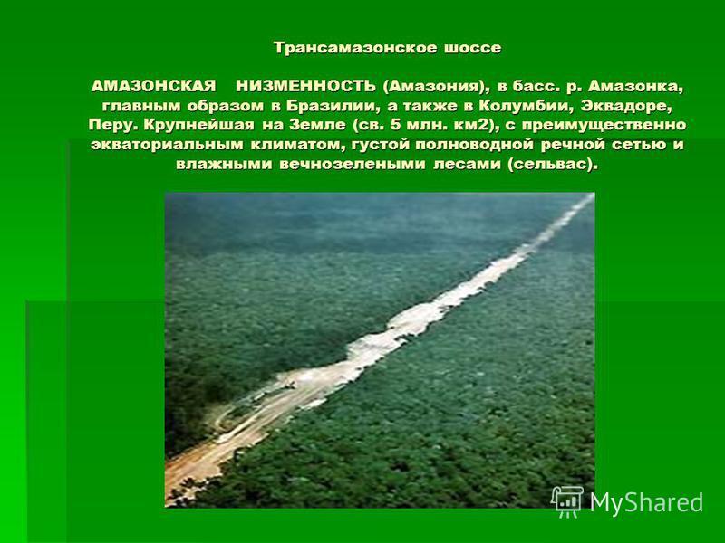 Трансамазонское шоссе АМАЗОНСКАЯ НИЗМЕННОСТЬ (Амазония), в басс. р. Амазонка, главным образом в Бразилии, а также в Колумбии, Эквадоре, Перу. Крупнейшая на Земле (св. 5 млн. км 2), с преимущественно экваториальным климатом, густой полноводной речной