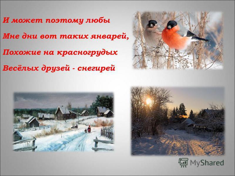 И может поэтому любы Мне дни вот таких январей, Похожие на красногрудых Весёлых друзей - снегирей