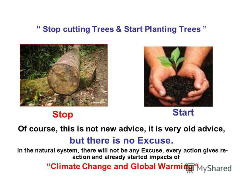 Stop cutting Trees & Start Planting Trees Of course, this is not new advice, it is very old advice, but there is no Excuse. In the natural system, there will not be any Excuse, every action gives re- action and already started impacts of Climate Chan