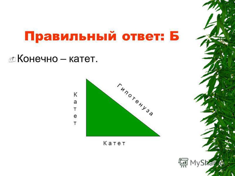Одну из сторон прямоугольного треугольника называют А. Кадетом Б. Катетом В. Каретой Г. Кометой 0,5 балла