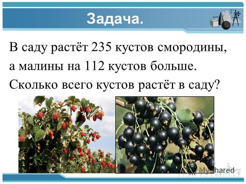Задача. В саду растёт 235 кустов смородины, а малины на 112 кустов больше. Сколько всего кустов растёт в саду?